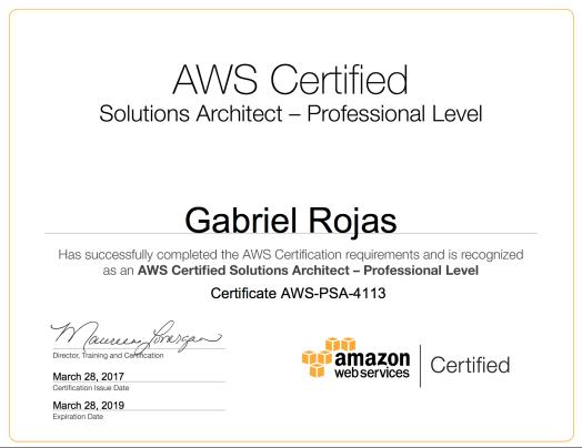awsSAE_Professional